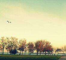 Beautiful Autumn  by mahmoud1x1