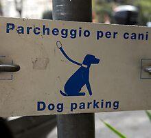 Dog Parking - Rome by Erin Kanoa