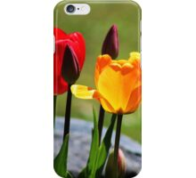 Tulips in the Light iPhone Case/Skin
