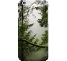 Misty Mossy Morning iPhone Case/Skin