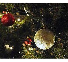 Holiday Series VI Photographic Print