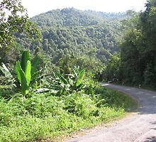 The road from Mae Sariang to Mae Hong Son by Jack Reverman