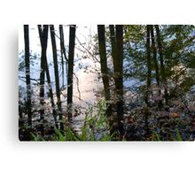Waterlines Canvas Print