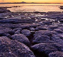 Boundary Bay Sunrise by Ryan Watts