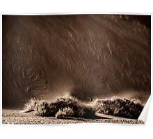 Smoking Dune | Namibia Poster