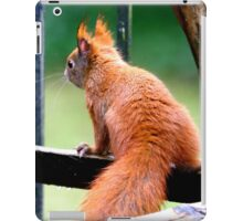 Red Squirrel iPad Case/Skin