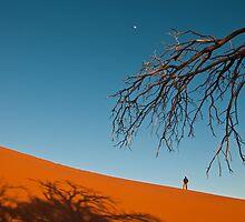 Dune 45 | Sossusvlei by Olwen Evans