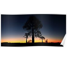 outback silhouettes Poster