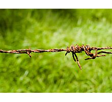 Barbed Wire fence - Mount Warning - Australia Photographic Print