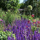 Summer Garden by karina5