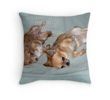 chihuahuas in sinc Throw Pillow