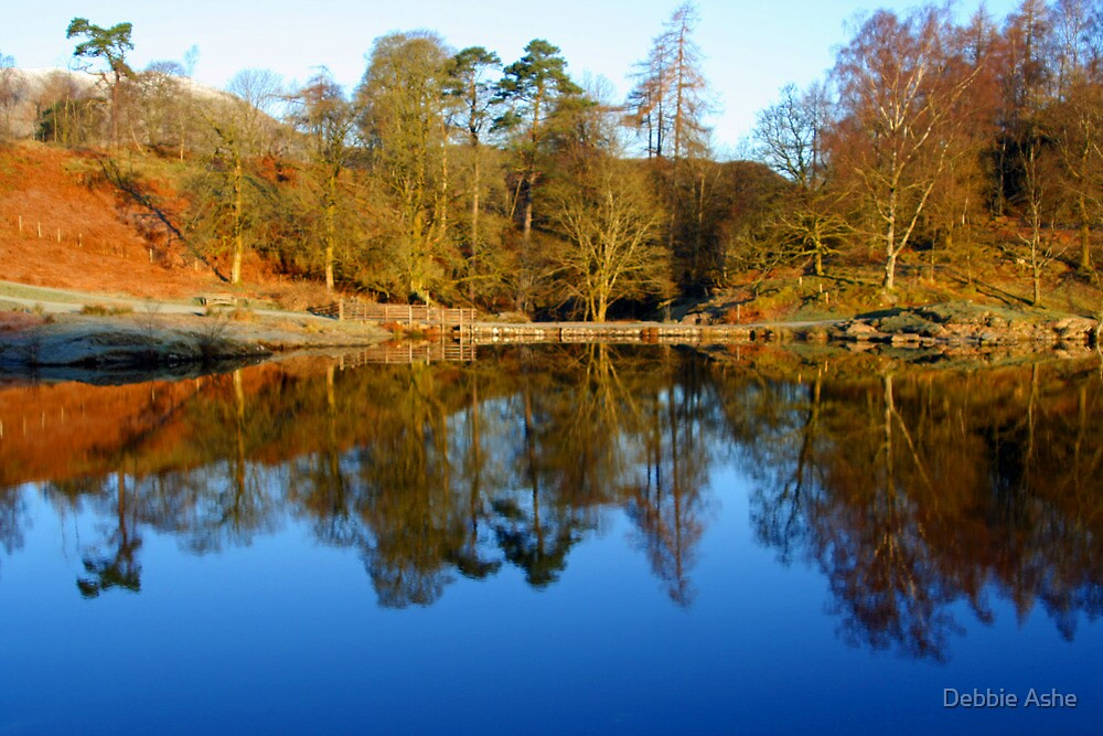 Tarn Hows  by Debbie Ashe