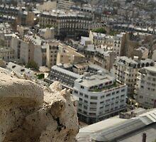 Vue depuis le Sacré-Coeur by Camilla