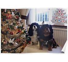 Happy Christmas from Charlie and Poppy ( my girls) Poster