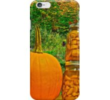 Autumn Treasure 2 iPhone Case/Skin