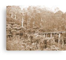 Mt Dandenong, VIC, Australia Canvas Print