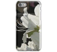 Azaleas  iPhone Case/Skin