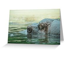 Hippo-cam Greeting Card