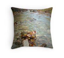 Autumn in Paklenica Throw Pillow