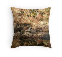 Rock reflection with a bird Throw Pillow