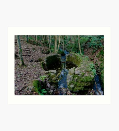 Lady Kennedys Bath in Dunottar Woods Art Print