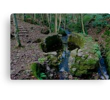 Lady Kennedys Bath in Dunottar Woods Canvas Print