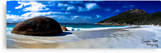 Little Beach Panorama by Sheldon Pettit