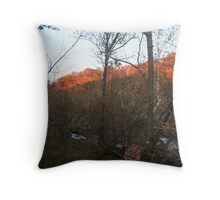 Sunset on the forest Throw Pillow