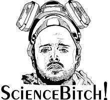 Aaron Paul, Jesse Pinkman - Breaking Bad, Science Bitch! by Matty723