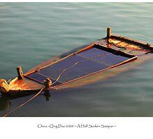 Nature: Sunken Sampan in Water by adpixels