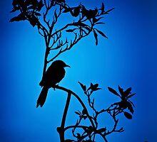 Lone Bird by Kingston  Liu