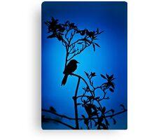 Lone Bird Canvas Print