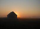 Sunrise in the Fog by Gisele Bedard