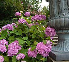 Flowers of the Castle by Ryan Davison Crisp