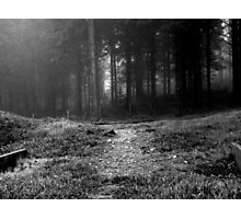 Path Photographic Print