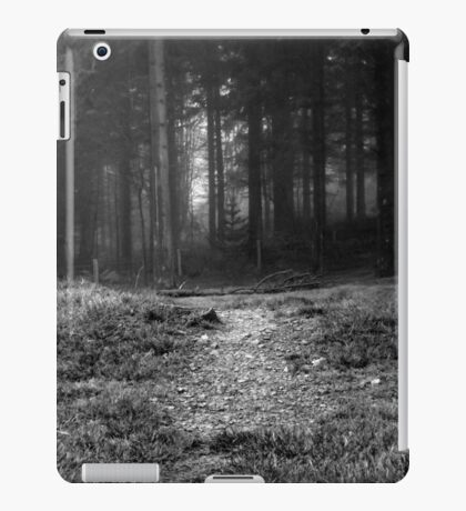Path iPad Case/Skin