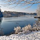 First snow at Johnson's Pond, Boxford, MA by Susana Weber