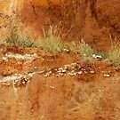 OLD HUNSTANTON CLIFF FACE by ANNETTE HAGGER