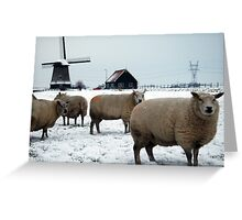 Netherlands Greeting Card