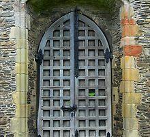 Valle Cruicis Abbey Doorway by Carol Dawes
