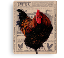 Barker's Special Poultry Remedy Canvas Print