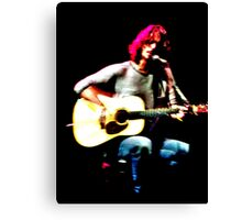 CC acoustic Canvas Print