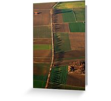 Shadows of Silent Sentinels Greeting Card