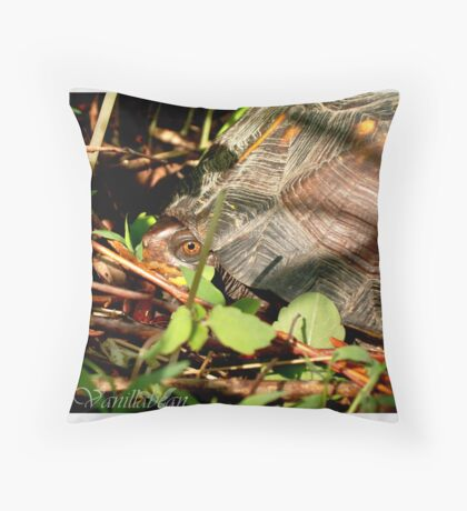 Is it Safe Throw Pillow