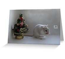 Santa forgot to visit................ Greeting Card