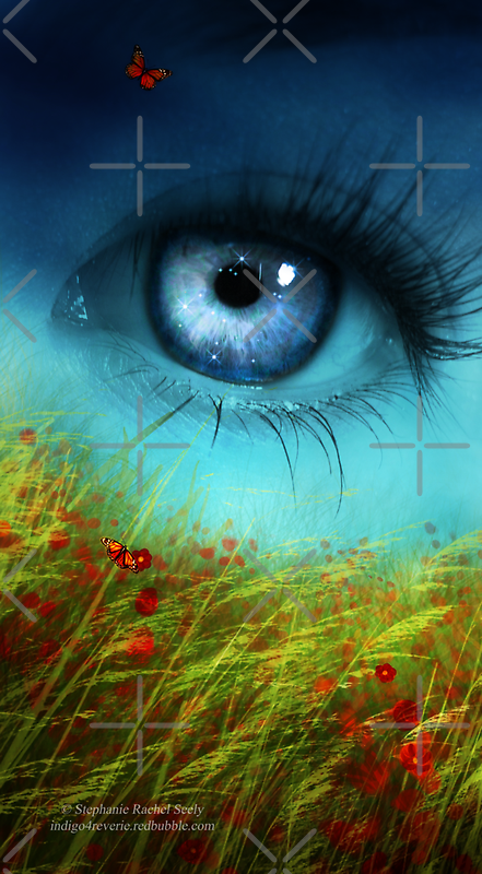 A Field of Daydreaming  by Stephanie Rachel Seely