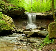 Blue Hen Falls Ohio by twofeetphoto