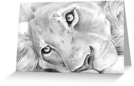 Resting Lion by beanocartoonist