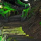 Stairway to heaven, er San Francisco by Bryan D. Spellman
