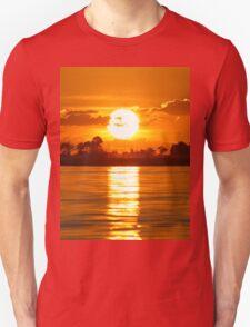 a beautiful Botswana landscape T-Shirt